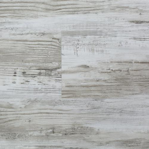 Rigid Platinum Cottonwood