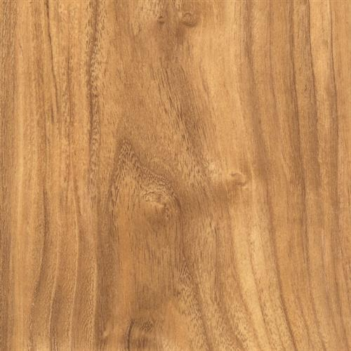 Syncorex Collection Teak Harbor