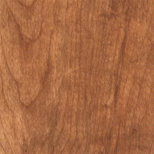 Syncorex Collection Laurel Cherry