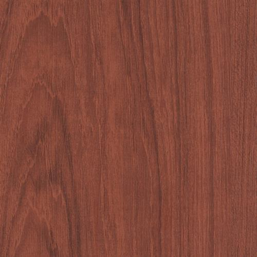 Syncorex Collection Bamboo Cherry