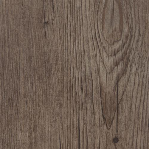 Syncorex Collection Hickory Firethorn