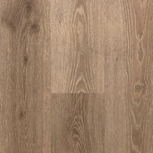 7 Vistas IGT Clamshell Oak