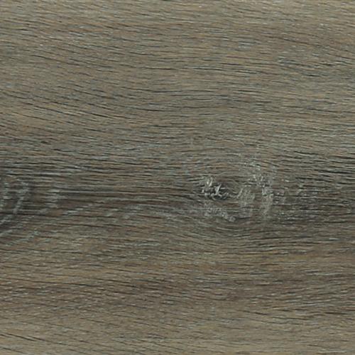 Falcon Oak