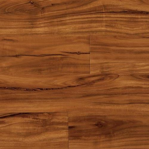 Coretec Plus Plank Gold Coast Acacia