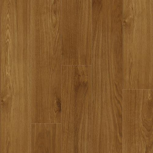 Sierra Plank Quincy