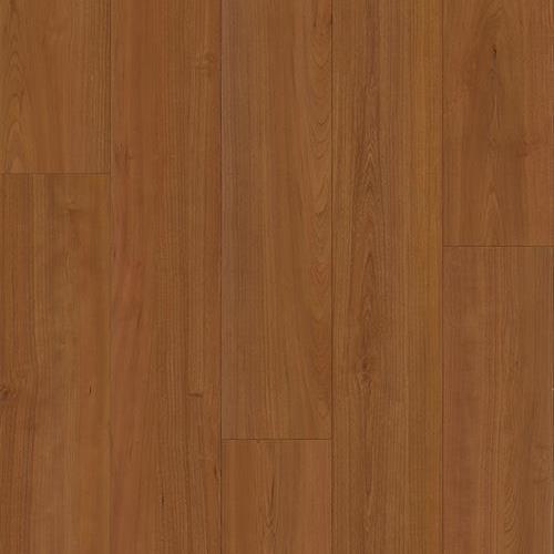 Sierra Plank Truckee