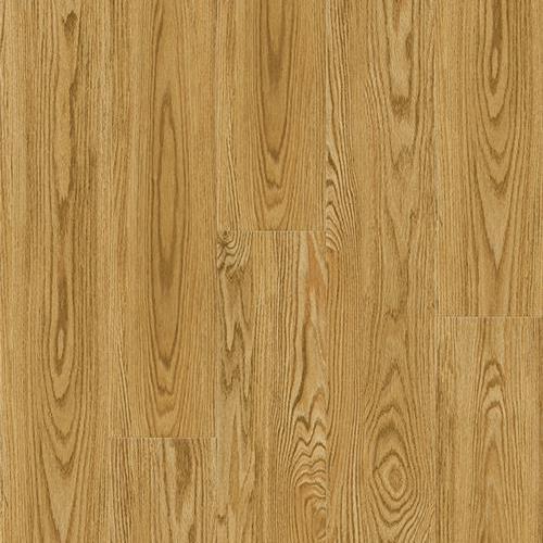 Sierra Plank Jackson