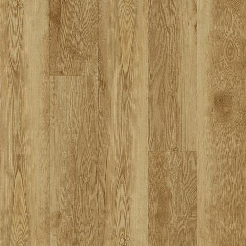 Sierra Plank Hayden
