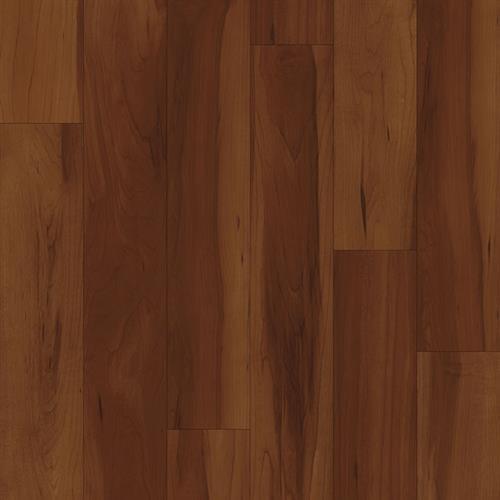 Project Plank Durango