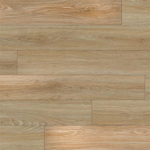 Engage Genesis 1200 Sandwood