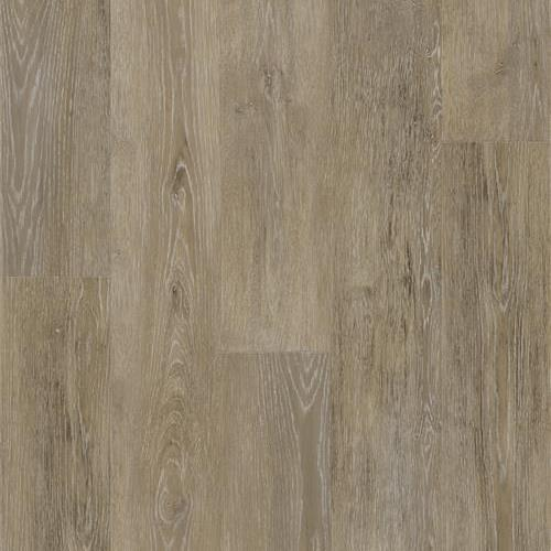 600NP - Carriage Oak Oat