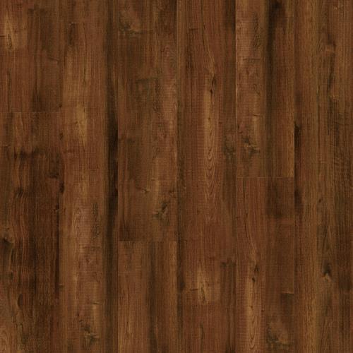 Sheldon Oak