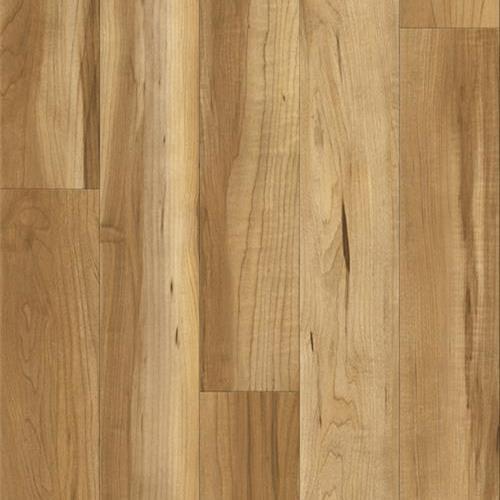Sugar Wood Maple
