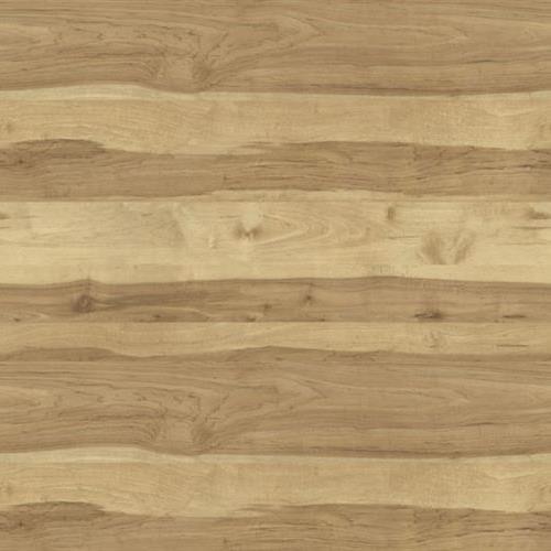 Burlington Plank Middlebury