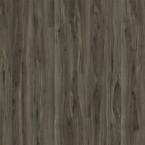 New Haven Plank Siberian Elm