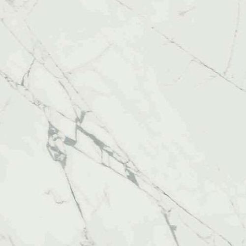 Anima Statuario Venato - 24X24