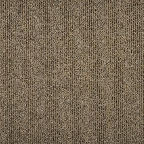 Simplicity - HRCD Barley