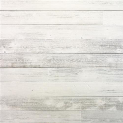 European Plank Collection Brushed Birch Oyster Point