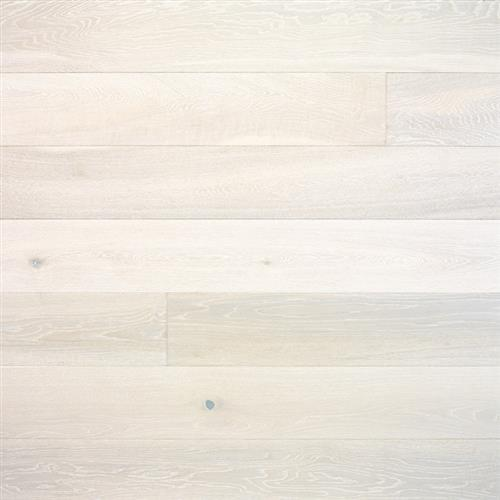 European Plank Collection Brushed Oak Snohomish