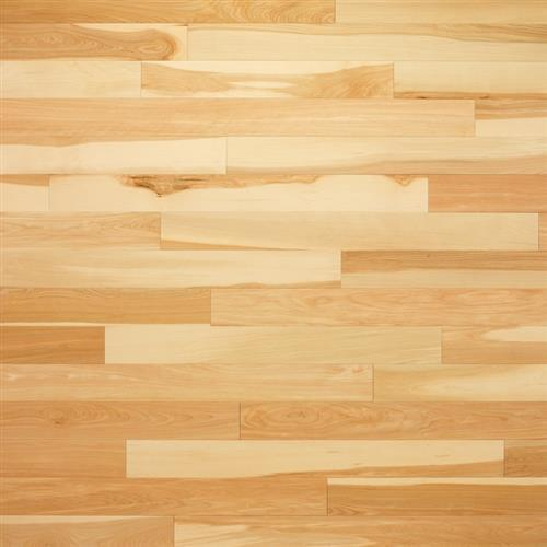Progressives Collection Yellow Birch Natural