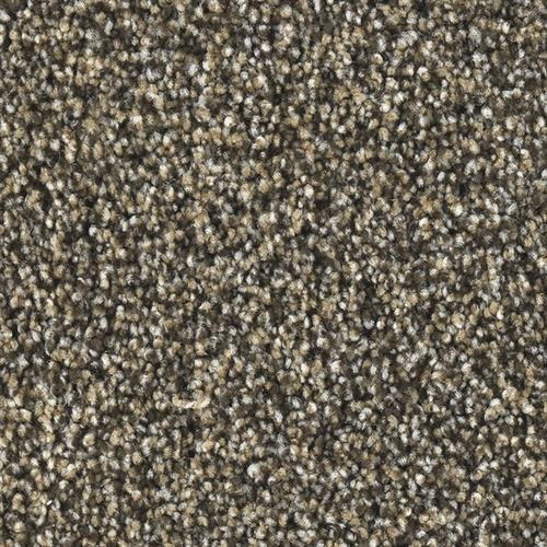 Marquis Industries Chic Grand Teton Carpet Billings