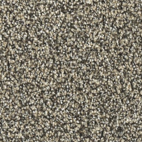 Marquis Industries Exquisite Chino Carpet Lubbock Texas
