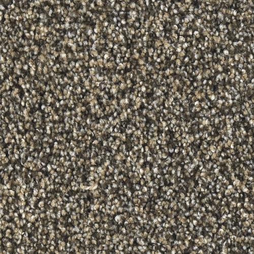 Yates Carpet And Flooring Carpet Alan