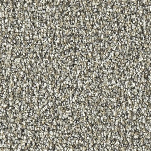 Marquis Industries Ultimate Beauty Desert Stone Carpet