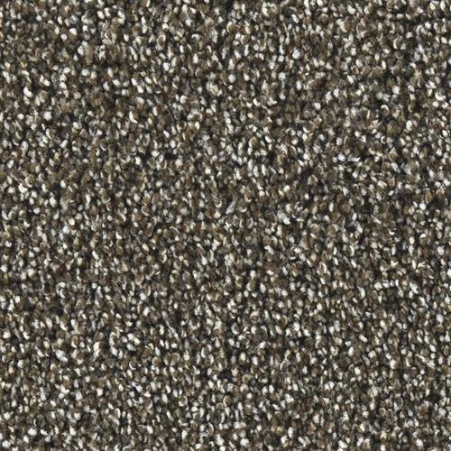 Marquis Industries Natural Wonder Metropolitan Gray Carpet