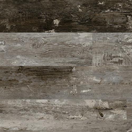 Plantation Plank Azalea