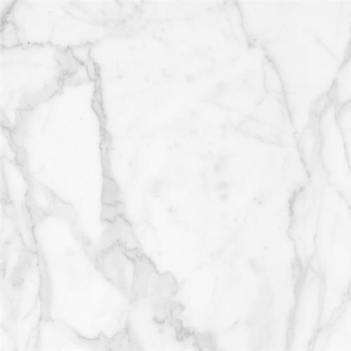 Binghampton Blanc - 12X24 Matte