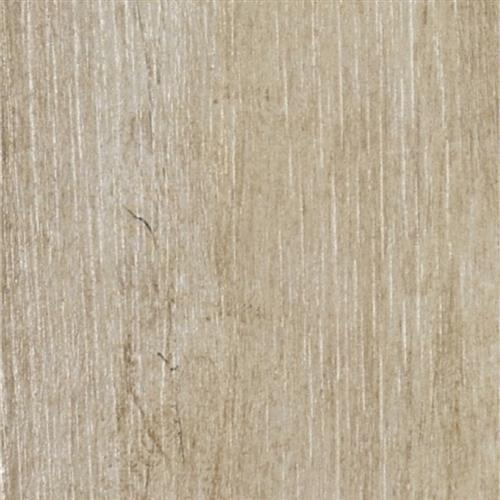 Aransas Plank Ash - 7X24