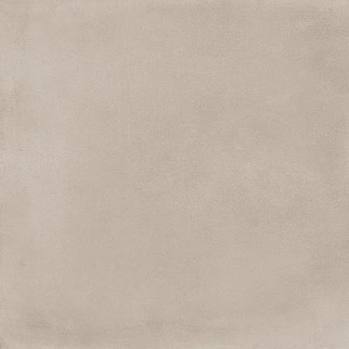 Moline Vanilla - 12X24