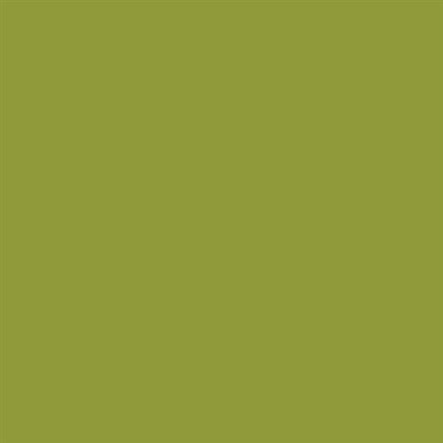 Jourdanton City - Wall Tile Kiwi - 6X6