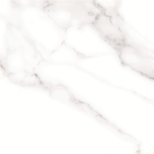 Arnside Polar 18X18