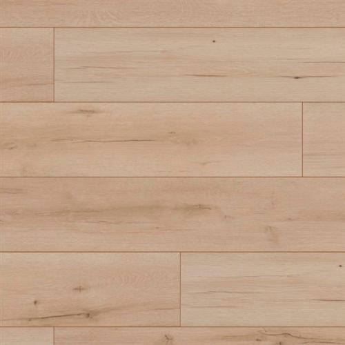 Vermier Plank Bienne