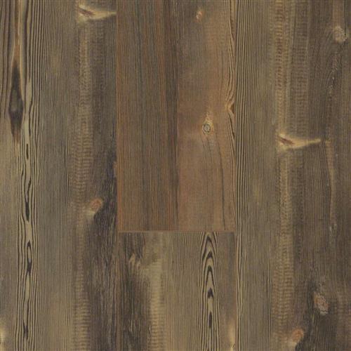 Martin Plank Jefferson