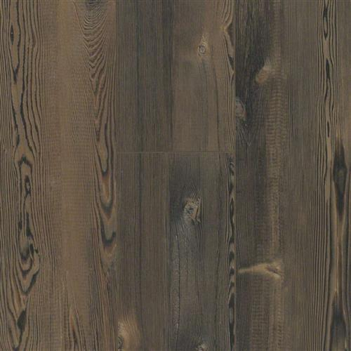 Martin Plank Lithonia