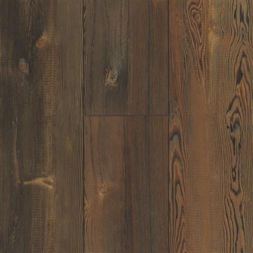 Martin Plank Nashville