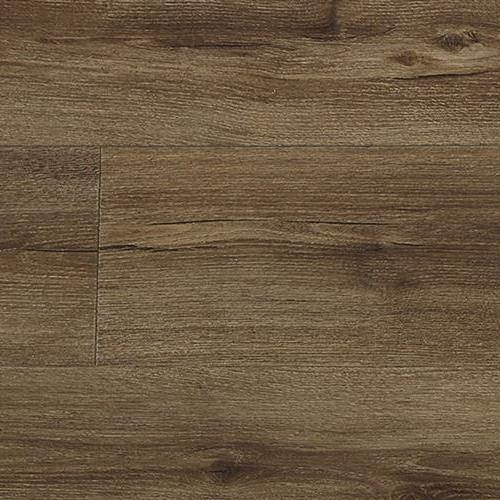Vierzon Plank Salem