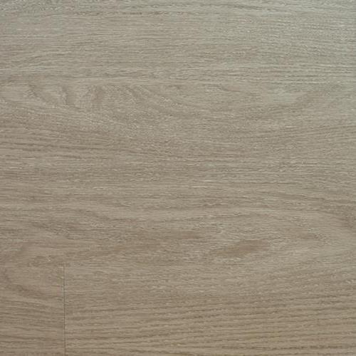 Arizona Plank Eagar