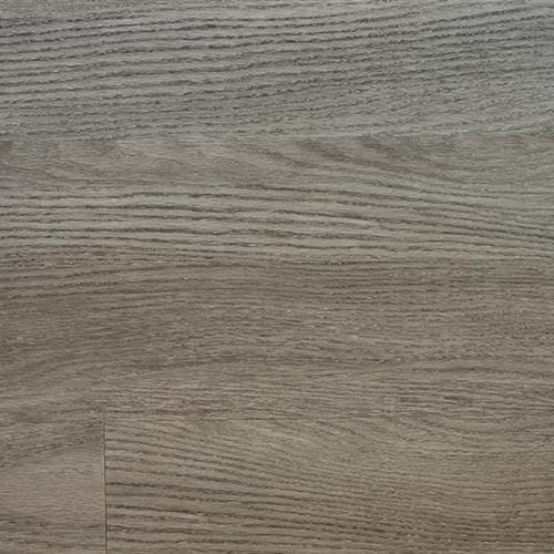 Arizona Plank Gilbert