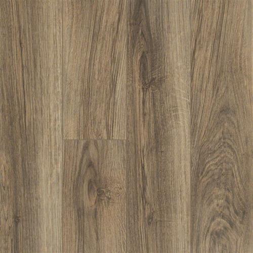 Hamish Plank Kingsley