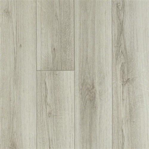 Hamish Plank Lainston