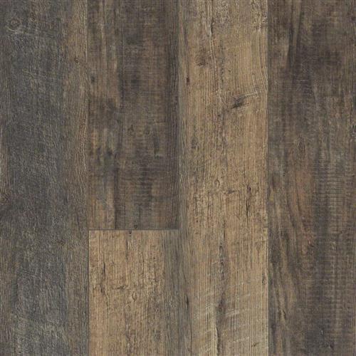 Hamish Plank Solent