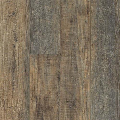 Hamish Plank Tylney