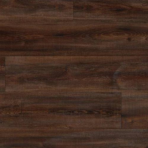 Starkey Plank Ahern