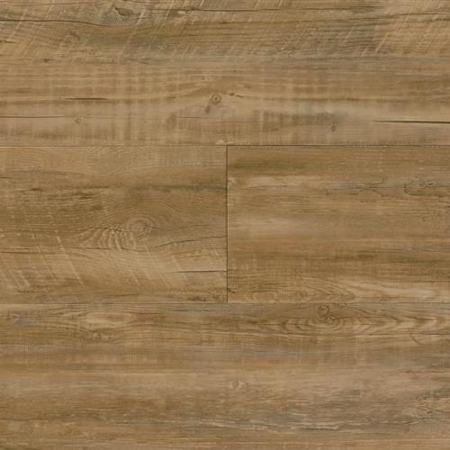 Starkey Plank Nash