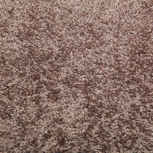 Stock Carpet Sweet Fudge