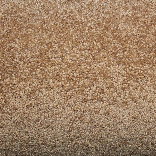 Stock Carpet Wren